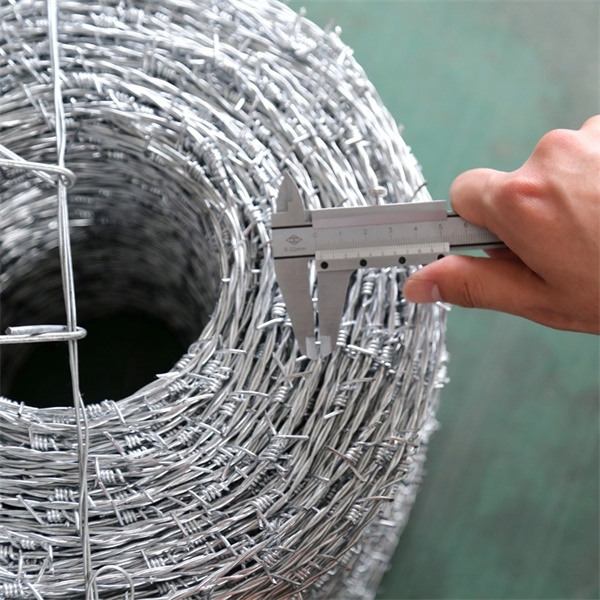 wholesale Hot Dipped Galvanized Barbed Wire